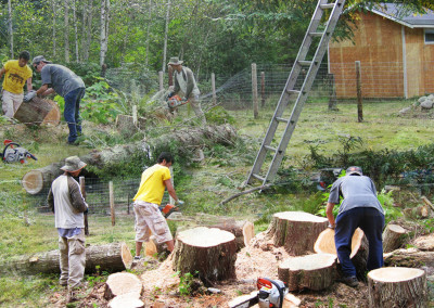 Community Services- Trung Michael, and Hoa tackle the wood ~ September  2011