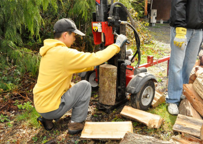 Ling Feng takes on the wood-splitter