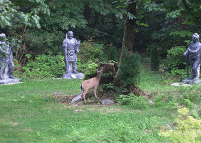 Curious deer checking out The Three Sages