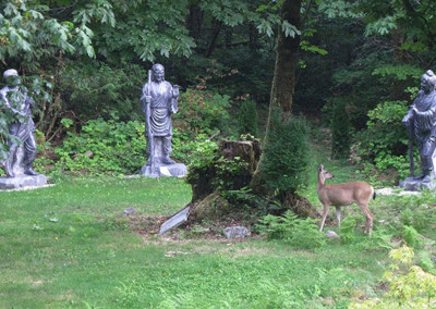 Curious deer discovered the new scenery of Snow Mountain ~ Three Sages of T'ien T'ai