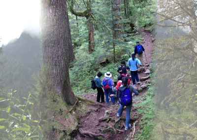 Hiking into the deep end of Barclay Lake trail