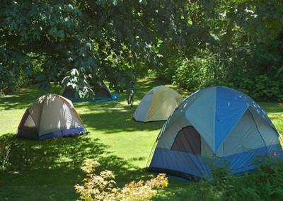 Summer Camping at SMM